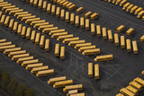 School Buses in Parking Lot  from Above