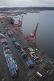 Cranes and Shipping Containers at Port of Seattle