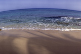 Panoramic Fisheye View of an Ocean and Beach