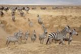 Ngorongoro Crater Conservation Area  Tanzania