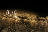 Lights Trails Spelling Love in Field at Night