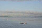 An Empty Dock Floating in the Puget Sound