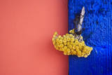 Bouquet on Blue Shutters  Crete  Greece