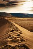 Footprints on Sand Dune at Bruneau Dunes  Idaho