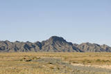 Khongoryn Els Sand Dunes  Gobi Desert