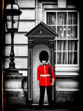 Buckingham Palace Guard - London - UK - England - United Kingdom - Europe