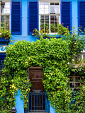 Blue House in Notting Hill - London - UK - England - United Kingdom - Europe