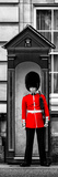 Buckingham Palace Guard - London - UK - England - United Kingdom - Europe - Door Poster