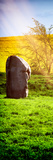 Natural Meadow Landscape with Abstract of Stones - Pewsey - Wiltshire - UK - Door Poster