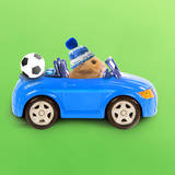Hamster Driving Miniature Sports Convertible Car Papier Photo