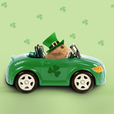Hamster Driving Car Saint Patrick's Day