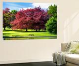 Wall Mural - Natural Floral Landscape - Hertfordshire - UK - England - United Kingdom - Europe