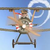 Hamster Flying Aeroplane