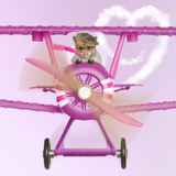 Hamster Flying Aeroplane
