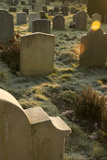 Sunlight on Gravestones
