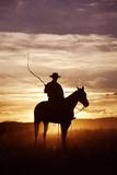 Cattleman Riding Quarter  Paint Horse at Sunset