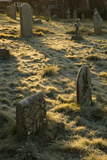 Sun Light on Gravestones