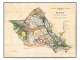 Oahu  Hawaiian Islands  Hawaii Territory Survey Map