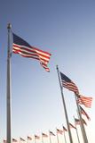 Usa  Washington Dc  Low Angle View on American Flags