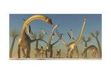 Herd of Diplodocus Dinosaurs