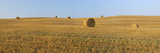Harvested Wheat Field with Bales of Hay
