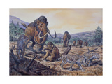 A Herd of Woolly Mammoth and Scimitar Sabertooth  Pleistocene Epoch