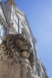 Lion Statue in Front of Santa Croce Church