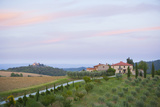 Farmhouses  Orchard  and Fields in Tuscany  Italy