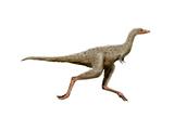 Linhenykus Dinosaur