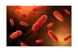 Conceptual Image of Flagellate Bacterium