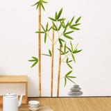 Bambou Aurea