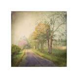 Sweet Road
