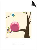 Orchard Owls VI