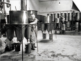 Workers Busy in a Brewery