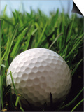 Close-up of Golf Ball in Grass