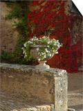 Urn of Petunias  Chateau de Pierreclos  Burgundy  France