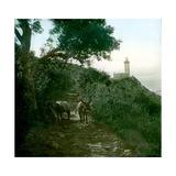 Cape Spartel  Tangier (Morocco)  Circa 1885