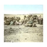 Biskra (Algeria)  Caravan at Rest