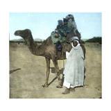 Arab Family on a Camel  Biskra (Algeria)