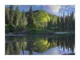 Pine River  Hart Ranges  British Columbia  Canada