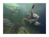 Green Sea Turtle and fish  Sabah  Malaysia
