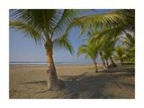 Playa Esterillos Este  Puntarenas  Costa Rica
