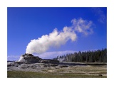 Castle Geyser  Yellowstone National Park  Wyoming