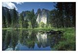 Granite reflecting in pool  Yosemite National Park  California