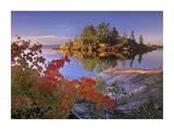 Island in Georgian Bay  Lake Huron  Killarney Provincial Park  Ontario