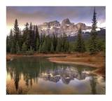 Castle Mountain and boreal forest reflected in lake  Banff National Park  Alberta