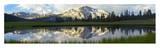 Panorama of Mammoth Peak and Kuna Crest  Yosemite National Park  California