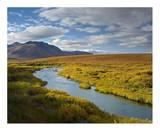 North Klondike River flowing through tundra beneath the Ogilvie Mountains  Yukon Territory  Canada