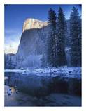 El Capitan and Merced River in winter  Yosemite National Park  California