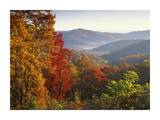 Autumn foliage on Blue Ridge Range near Jumping Off Rock  North Carolina